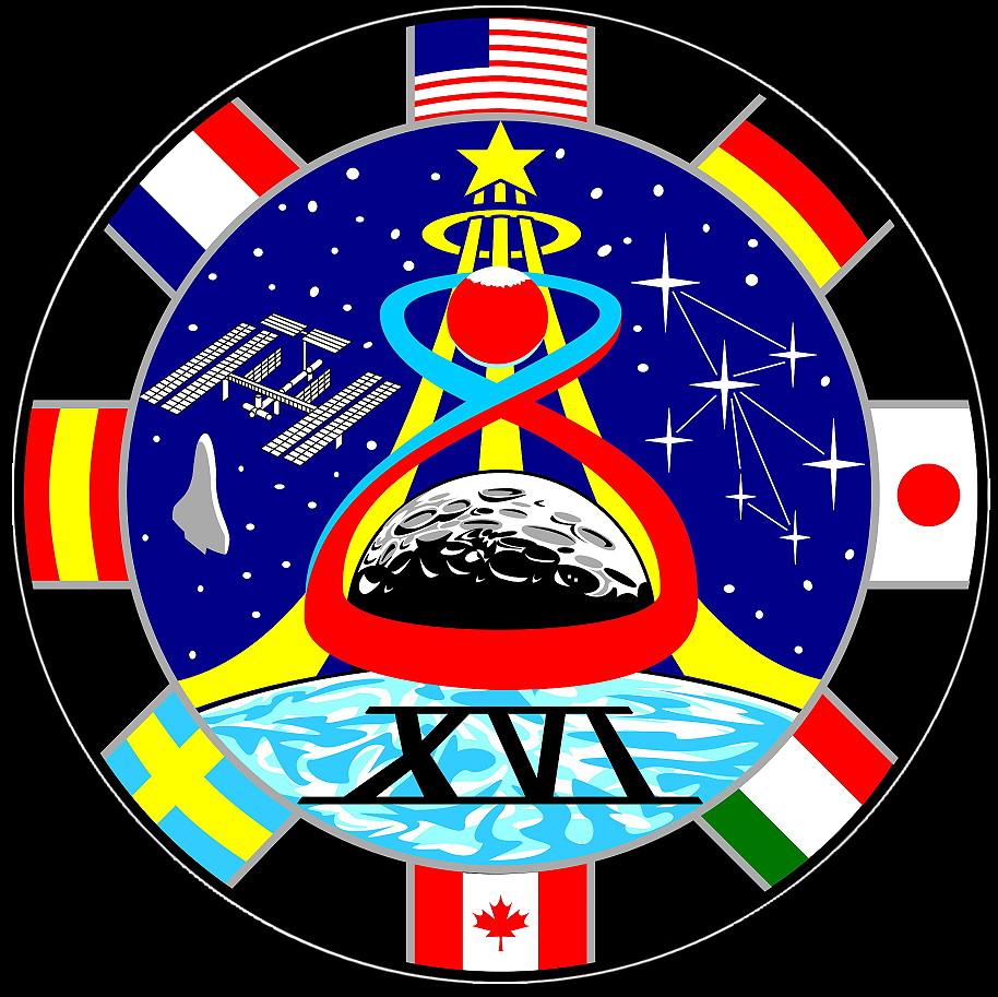 astronaut badges uniforms details - photo #23