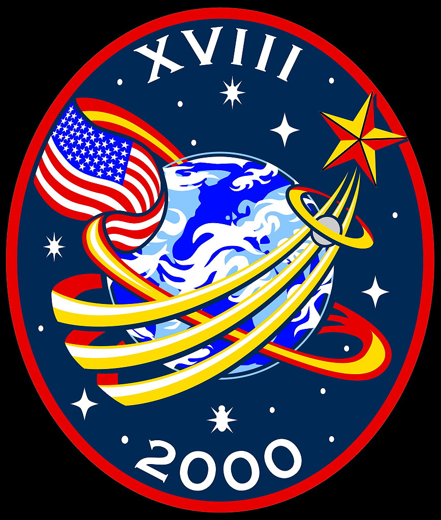 astronaut badges uniforms details - photo #36